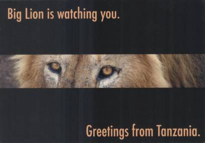 Big Lion is watching you. Greetings from Tanzania.